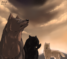 Wolf pack by Oodinen