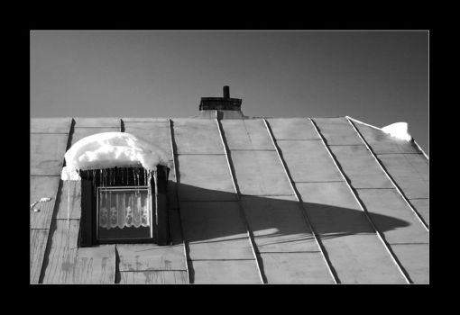 Cat on a Hot Tin Roof by Pytik