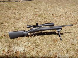 Remington 700 Police by FNPhil