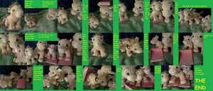 The story of unboxing Simba by Heatherannpt