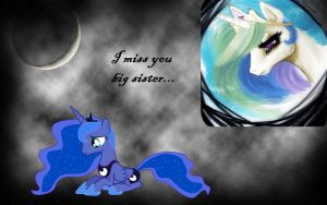 I Miss You Big Sister by axelrules1231