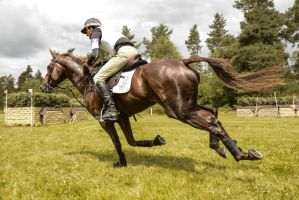 Eventing Wide Angle - Full Speed Gallop 09 Fly By by LuDa-Stock