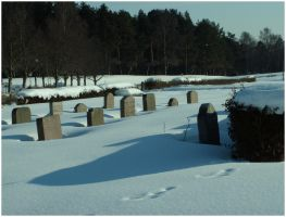 Cemetary 3 by uncommonman