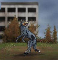 Jumping by Canis-ferox
