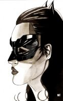 Catwoman Hathaway style by nathanobrien