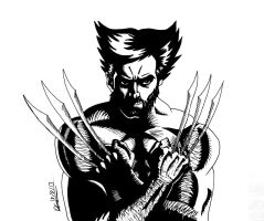 Wolvie by deanfenechanimations