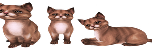 brown cats png by dementiaRunner