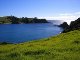 Vibrant New Zealand Colours by justducks