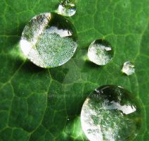 waterdrops 5 by GreenMusic