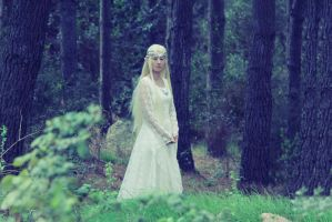A Part of Lorien by grinningsun