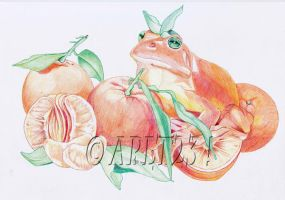 The orange frog Ballpoint Pen by Angeliqueperrin