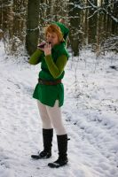 LoZ: Hailing the Cap by Mondlied