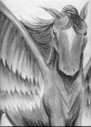 Pegasus -black and white