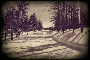 Follow the lines by MissPoc