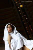 Star Wars - Leia Organa by EveilleCosplay