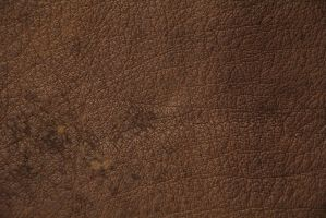 Brown Leather Texture Spotted High Resolution Stoc by TextureX-com