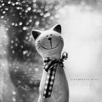 Cat loves rain by popoks