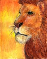 Lion - Colored by Ari245
