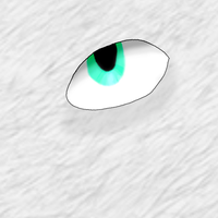 random eye by krxterme