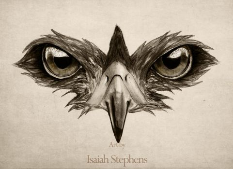 Hawk Eye by IsaiahStephens