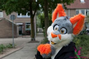 say what by FurryFursuitMaker