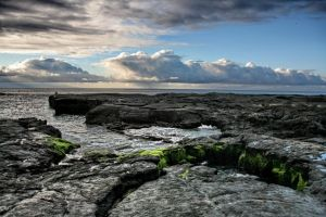 The Galapagos V.2 by JAHphoto