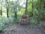Forest Throne I by IdunaHaya-Stock