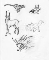 Sketches: Animals and dragon by Nyranor