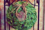 Bay Laurel Wreath Of Glory by cheshirekster