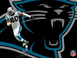 Julius Peppers Wall by SoundWWave