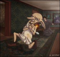 Harry and Kreacher: The Chase by Harry-Potter-Spain