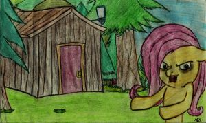 welcome to my shed by MLOpl