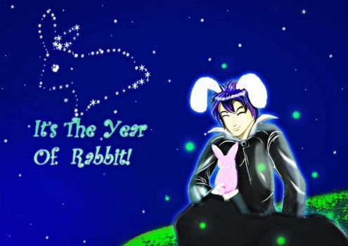 Rabbit's year by HeartlessNo9