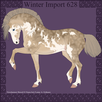 Winter Import 628 by ThatDenver