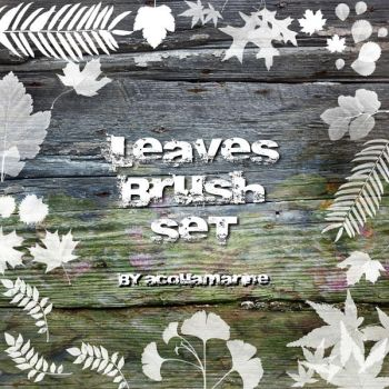 leaves brushes by acquamarine