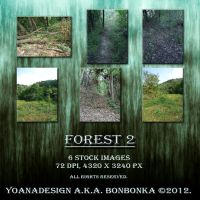 Forest 2 by bonbonka