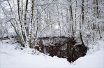 Winter Pond by Aenea-Jones