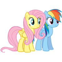 Fluttershy and Rainbow Dash by Coolez
