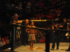 Nogueira UFC 110 by Shame-On-The-Night