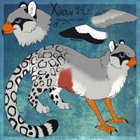 Xiaoxin Ref by Akule by TheSolitarySandpiper