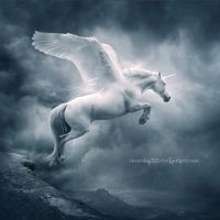.:Unicorn II:. by moroka323