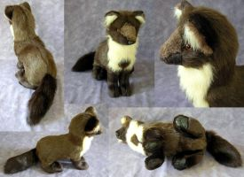 European Pine Marten by SarityCreations