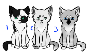 warriorcat kit adopts by Z-A-D-Y