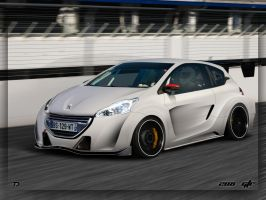 Peugeot 208 GTR by TTS by TeofiloDesign