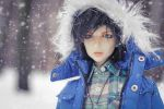 Let it snow by Salvarion