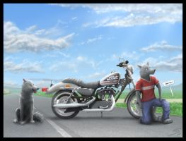 Sub911 Commission - Motorcycle by Temiree