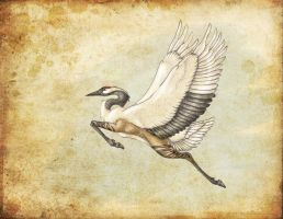 Asiatic Hippogryph by fiannaValkyrie