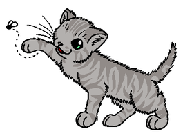 RiverClan - Tumblekit by WildpathOfShadowClan