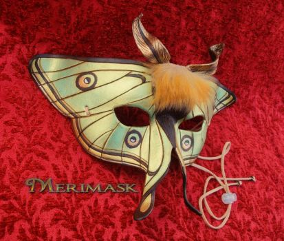 New Moth Mask 2015 by merimask