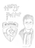 Harry Potter by grimsdyke